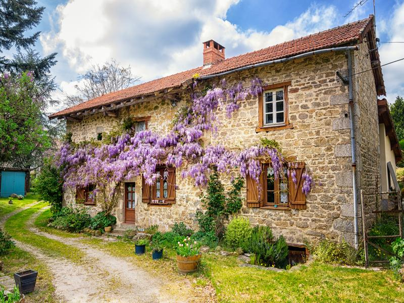france, equestrian, haute-vienne, limoges, stone, house, cottage, courtyard, wisteria, for sale, real estate, farm, stables, countryside, country house