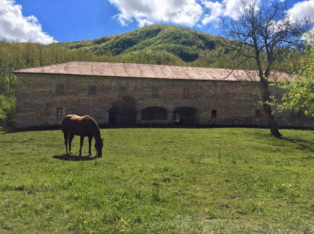 italy, parma, tuscany, equestrian, horses, horse, stable, renovation, farmhouse, countryside, country, mountains, appenine, national park, nature, riding, real estate, home, italian, bello, beautiful, elegant, genteel, old, meadow, farm, river, bridge