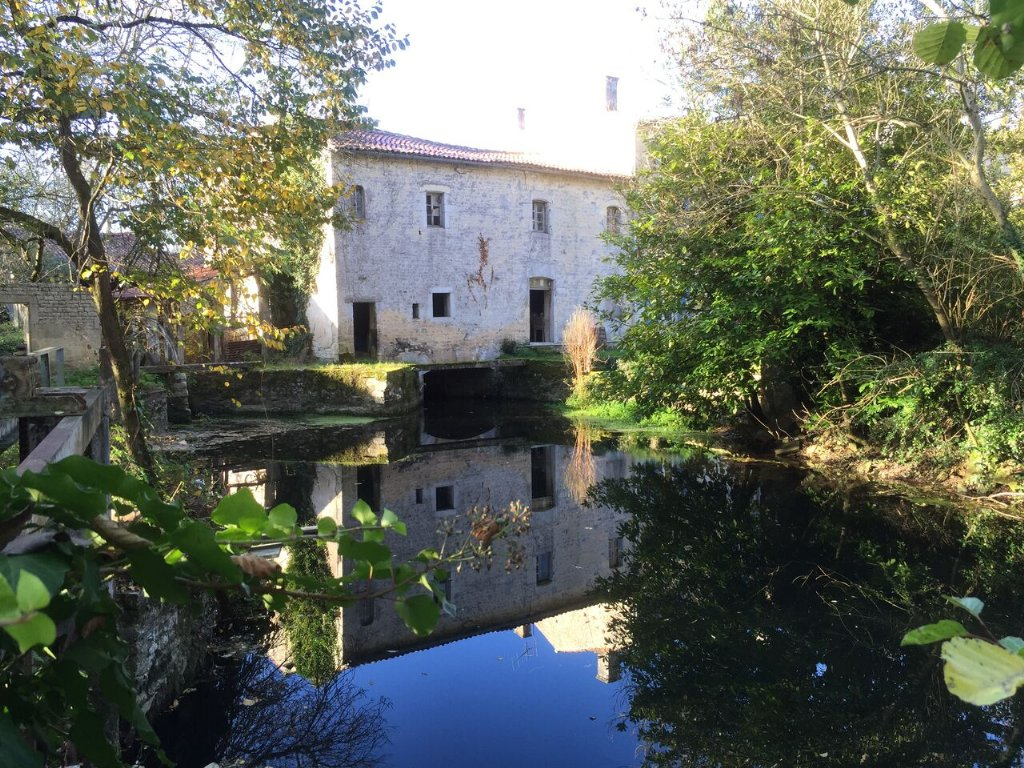 water mill, mill, france, poitou-charents, deux-sevres, french, river, riverside, river view, water, old house, trees, renovation, bucolic, countryside, vacation, property, real estate, rental