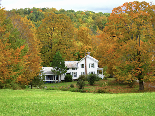 new england, fall, house, farmhouse, new york, upstate, acres, land, trees, autumn, white, home, real estate, grass, sky, view, hill, 1880, gorgeous, stunning, circa old houses, circa, old house love, old house, for sale