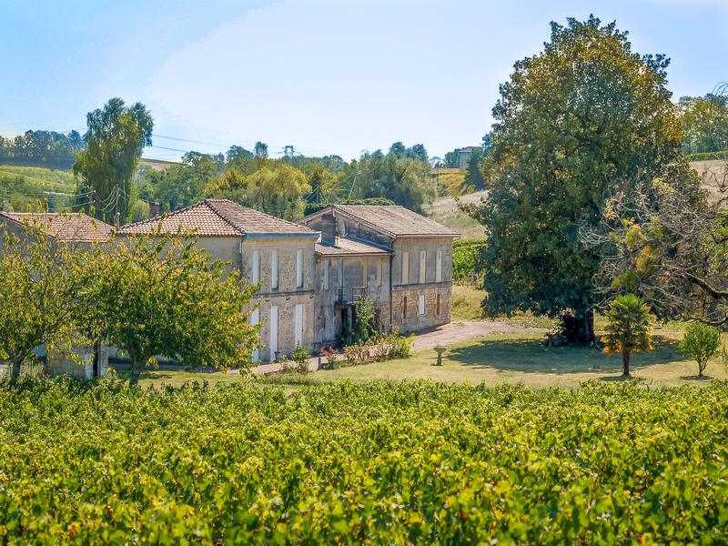 Today's property is a pretty vineyard in Gironde, France! The property comes with two stone houses, one with four bedrooms and an annex, and one with three bedrooms. There is also a winery with all equipment included, a barrel cellar, storage cellar and tasting room, garage, workshop, barn, and TWO choices of land at two different price points: For $659,013 you could own all of the above with 16 acres of vines. For $782,661, you could own all of this with 25 acres of vines! There is currently no stock, but everything is in turnkey condition - just move right in.  The houses could use some updating and refreshing, but if you split this property with a business partner (one house for each of you!), I think it's quite an affordable proposition! Per the listing, a description of the terroir: Vines in Côtes de Bourg AOC, clay and loamy terroir, density around 6000 vines/ha, well exposed on a hill. The main block og 6.5 ha ahead of the house and 2 other blocks for 4 hectares at 2 km maximum.