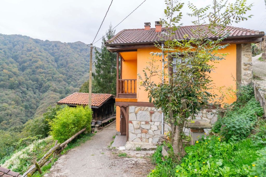 Bargain Friday! A Spanish village house surrounded by mountains with a small vegetable plot included, in Lena, Asturias, Spain!