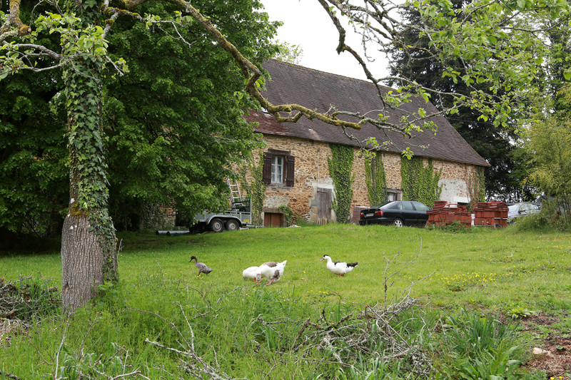 A twenty-five acre certified organic smallholding with two lakes and stone house to renovate, in the Dordogne!